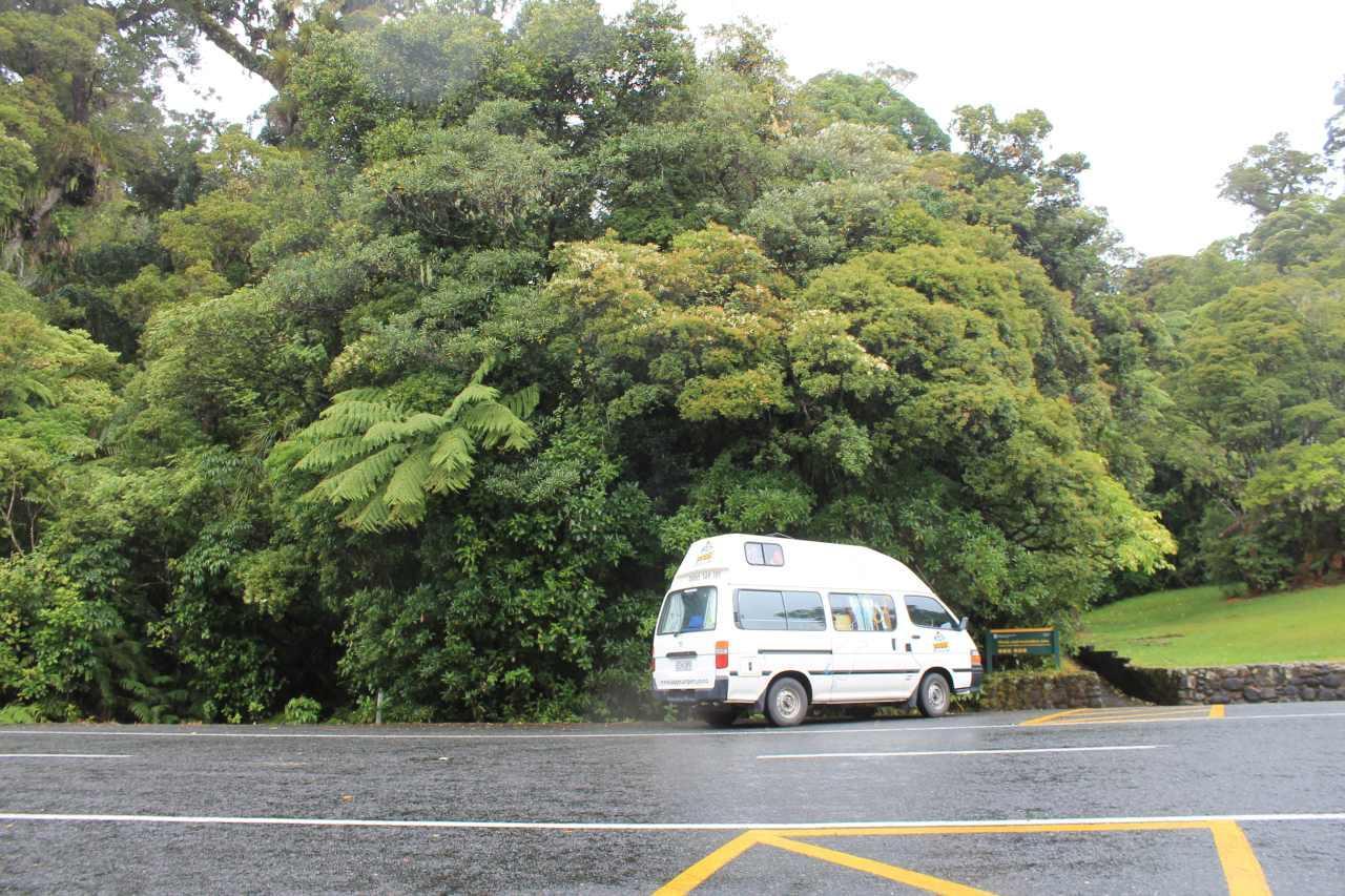 parkeren wouipoua forest